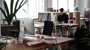 ¿Qué software necesito para gestionar mi negocio?